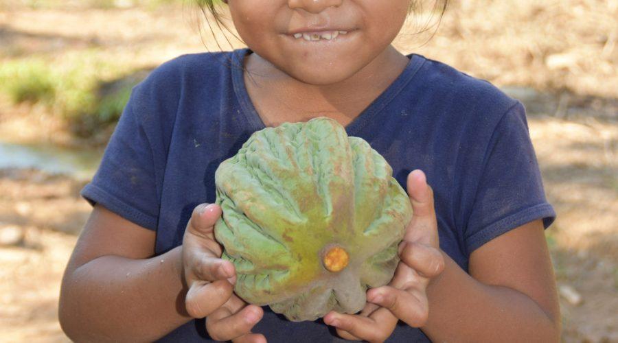 Mädchen, das Kokosnuss hält