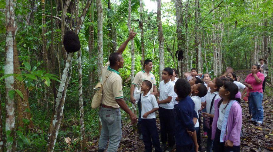 Menschen im Dschungel